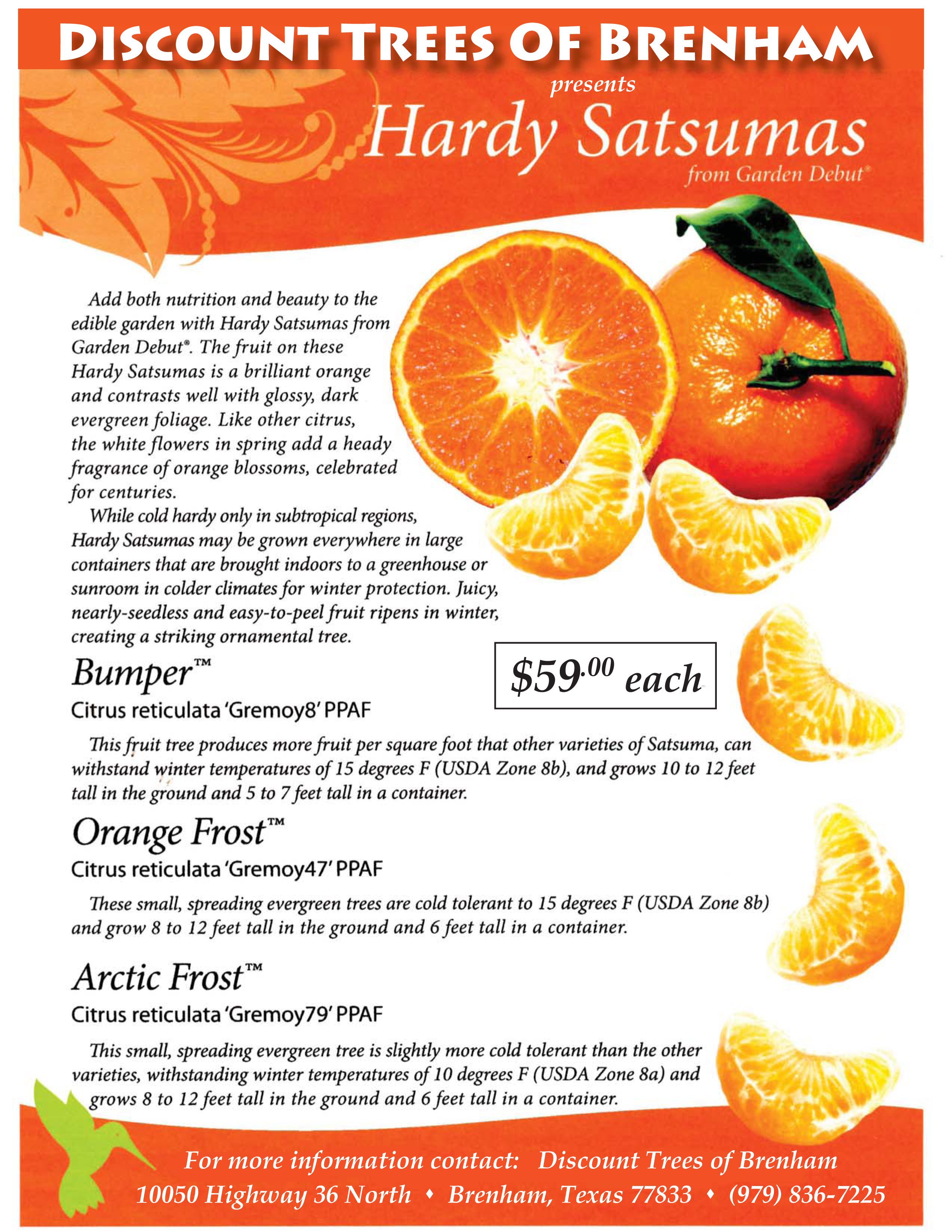 Orange_Tree_Flyer_Final.jpg
